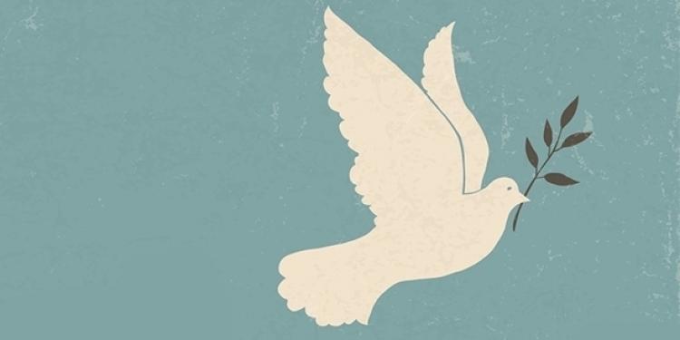 Yurtdışından 139 bilim insanı Barış Akademisyenlerine destek için kendilerini savcılığa ihbar etti